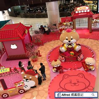 【新年活動】青衣   青衣城《SHIBAinc柴犬工房》