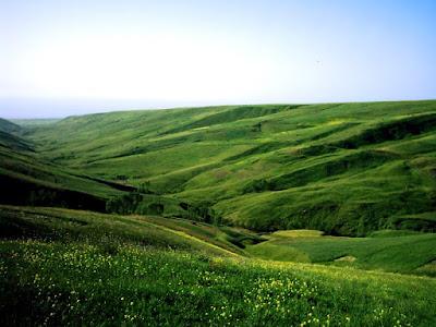 la plaine de Moghan, Ardebil, Iran