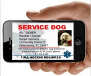 http://www.workingservicedog.com/idcards.aspx