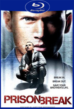 Prison Break 1° Temporada Completa (2005) BluRay Rip 720p Torrent Dublado