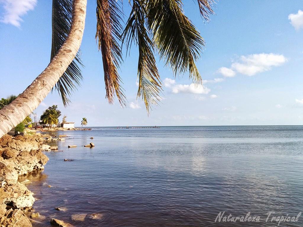Fotografía de la costa de la playa Mayabeque