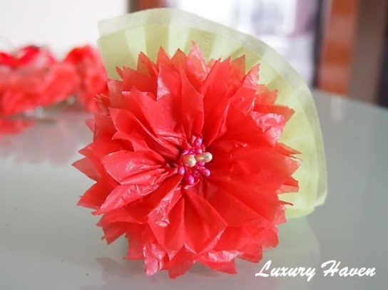 mothers day diy plastic carnation flower