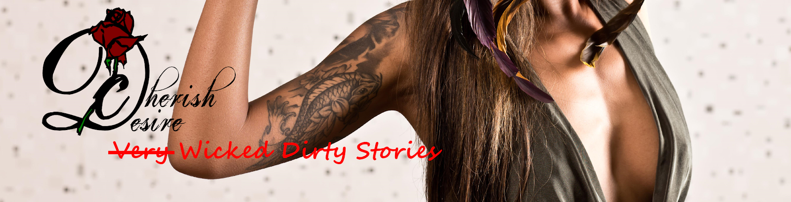 Very Wicked Dirty Stories, Max D, erotica