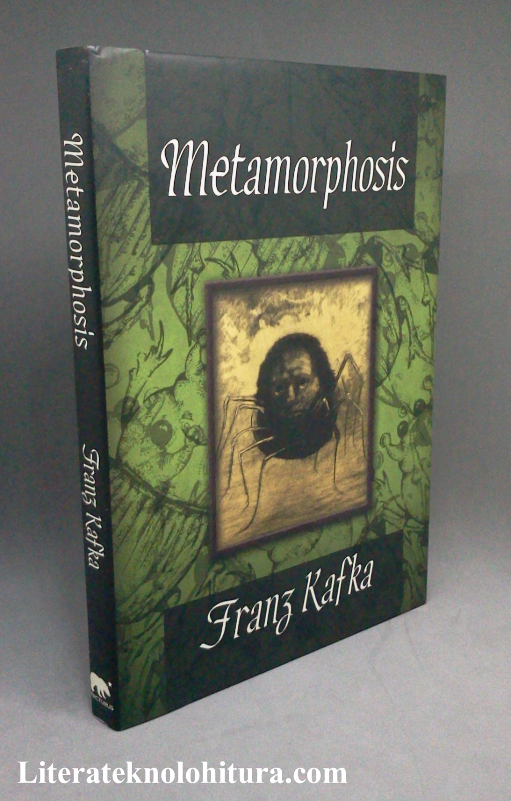 an analysis of character transformation in the metamorphosis a novel by franz kafka The book (the metamorphosis ) itself is a short novella but i think it would take an entire 1000 pages book itself to accommodate the interpretations and messages of this book understood by different interpreters and readers.
