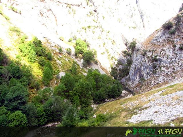 Vista del Cares desde Pando Culiembro.