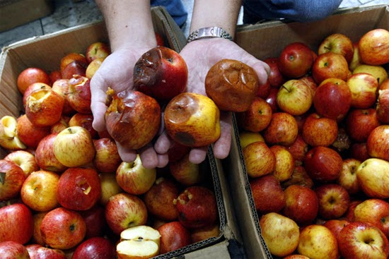 Frutas podres 1