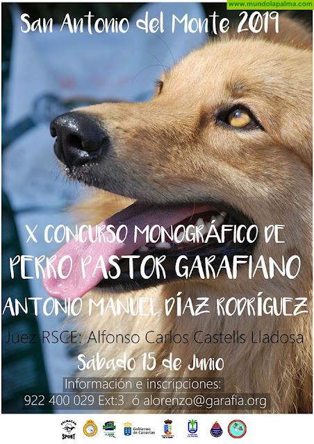 X Concurso de Perro Pastor Garafiano de San Antonio del Monte