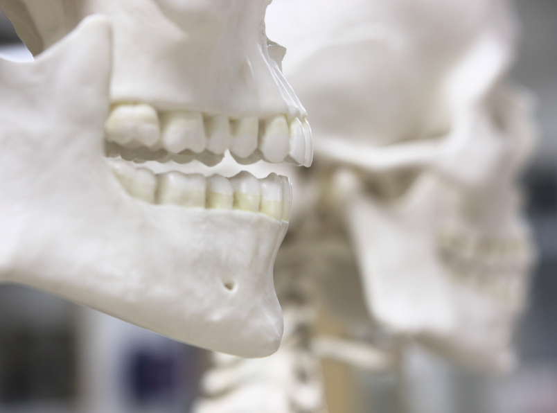 ANSI/ADA 1058-2010 (R2015) - Forensic Dental Data Set