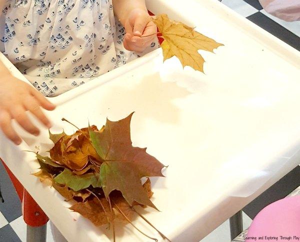 Leaf Suncatcher Plates