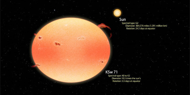 "This artist's concept illustrates how the most extreme ""pumpkin star"" found by Kepler and Swift compares with the sun. Both stars are shown to scale. KSw 71 is larger, cooler and redder than the sun and rotates four times faster. Rapid spin causes the star to flatten into a pumpkin shape, which results in brighter poles and a darker equator. Rapid rotation also drives increased levels of stellar activity such as starspots, flares and prominences, producing X-ray emission over 4,000 times more intense than the peak emission from the sun. KSw 71 is thought to have recently formed following the merger of two sun-like stars in a close binary system. Credits: NASA's Goddard Space Flight Center/Francis Reddy"