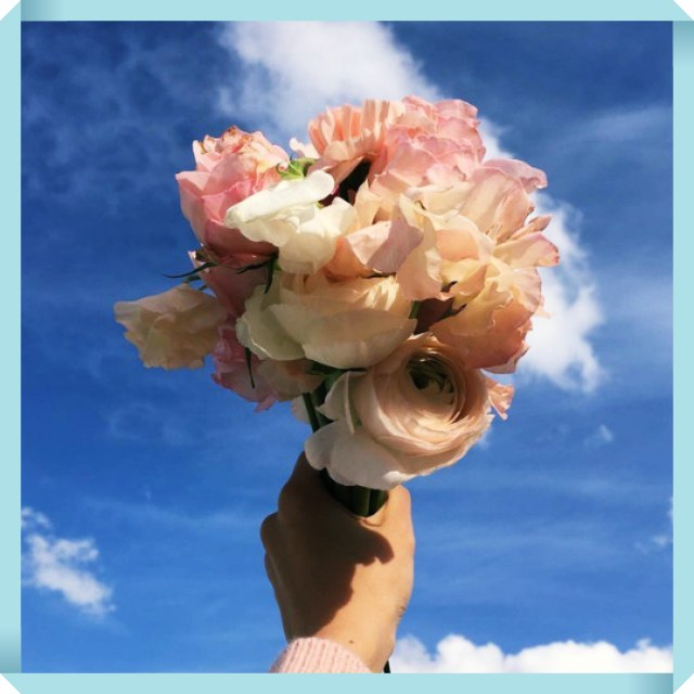 Pratique a Gratidão e colha flores em todos os dias de sua vida!