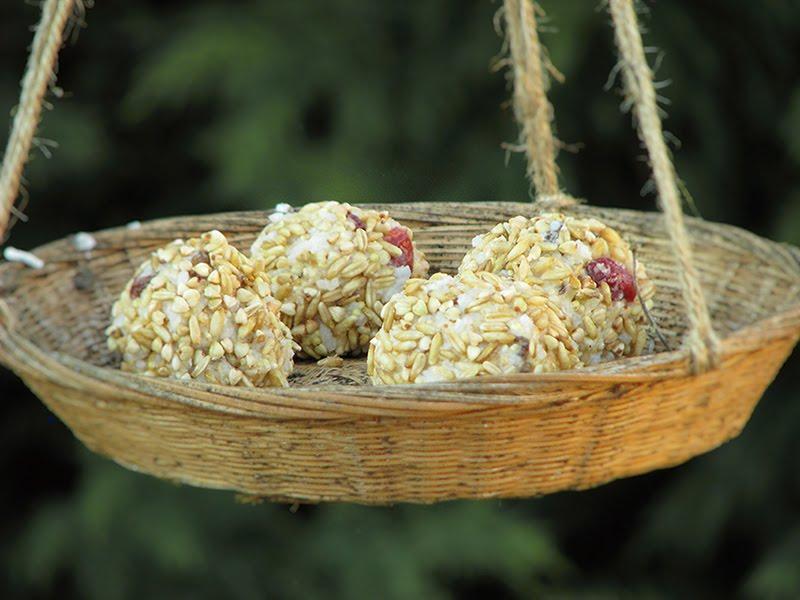 Boules de graisse vegetales au riz graines et fruits secs - Faire peur aux oiseaux jardin ...