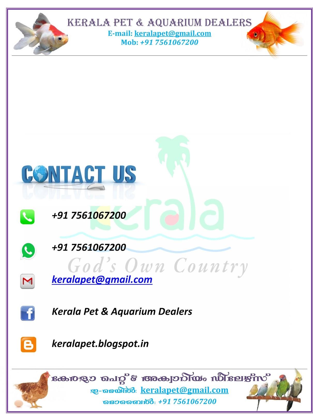 kozhi valarthal malayalam pdf download