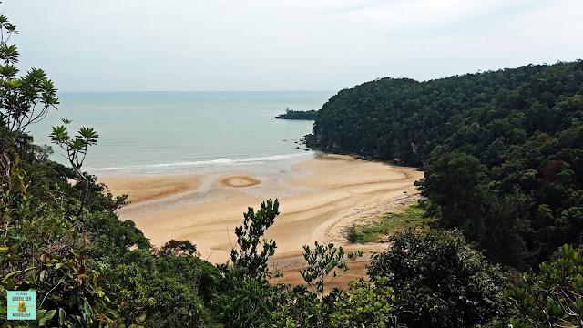 Padan Besar en Parque Nacional de Bako (Borneo, Malasia)
