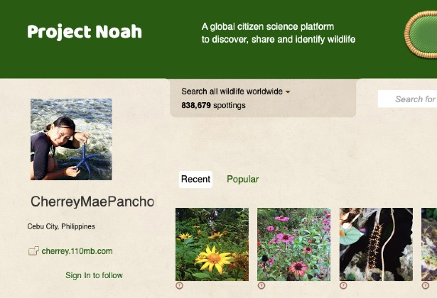 project Noah social media for scientists and nature lovers