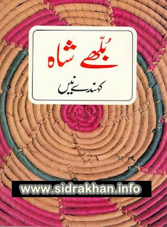 Bulleh Shah Kehnde Nain  pdf book