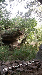 Bhimbetka, The Rock Shelters
