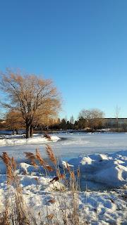 lac du Parc Jarry, arbres, ciel, l'hiver, neige