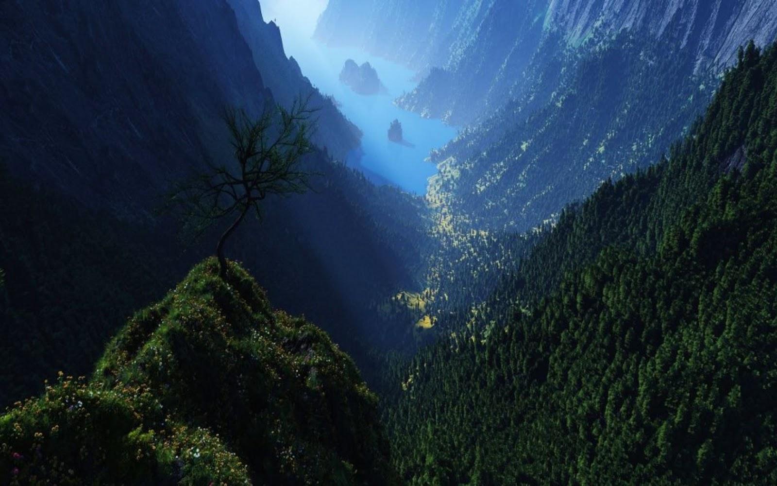 Mountain Forest 4K HD Desktop Wallpaper