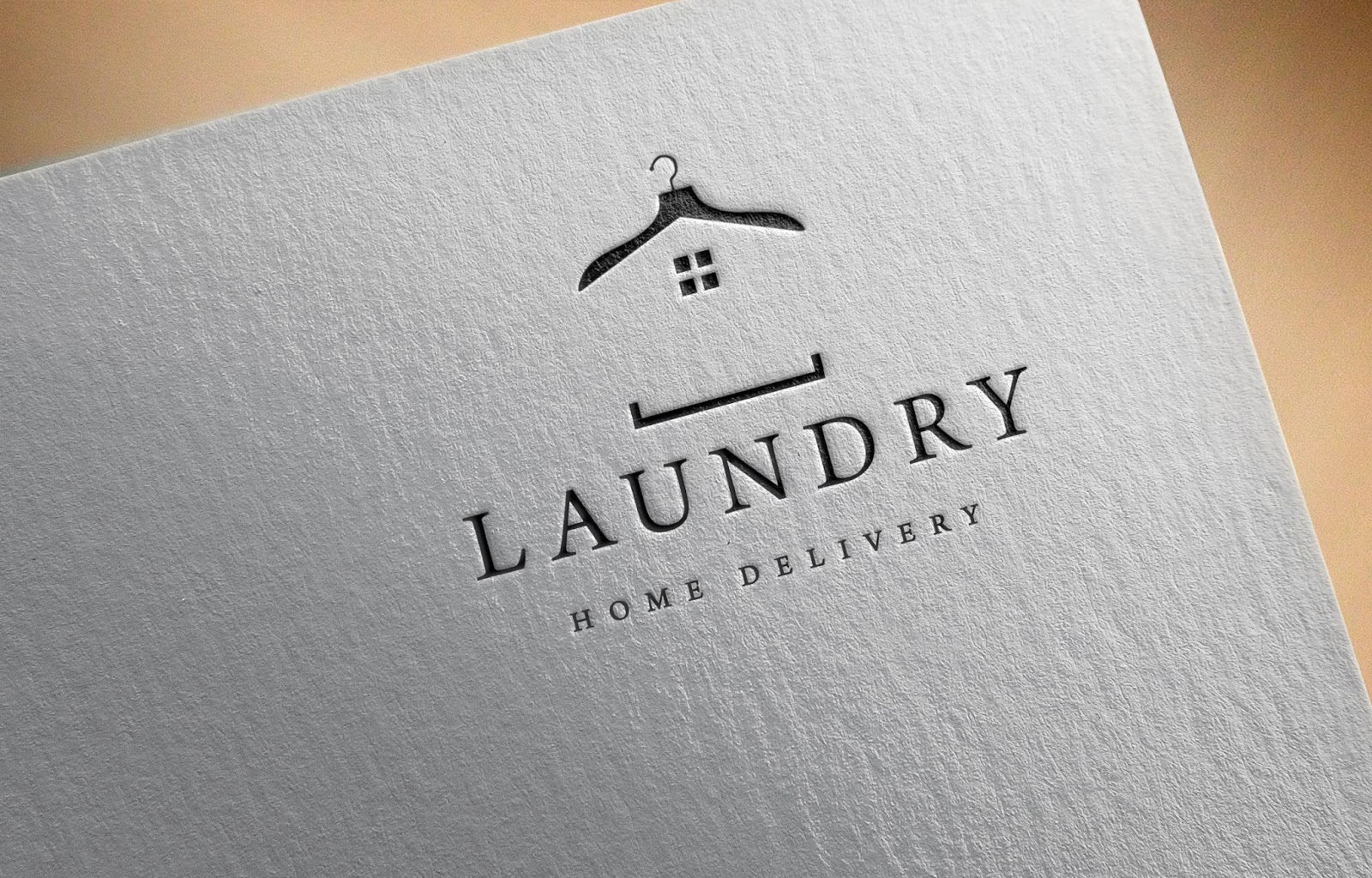 Laundry Home Delivery Logo Idea