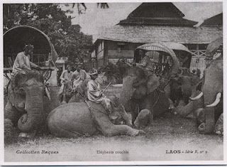 Huge Collection of Lao Postcards