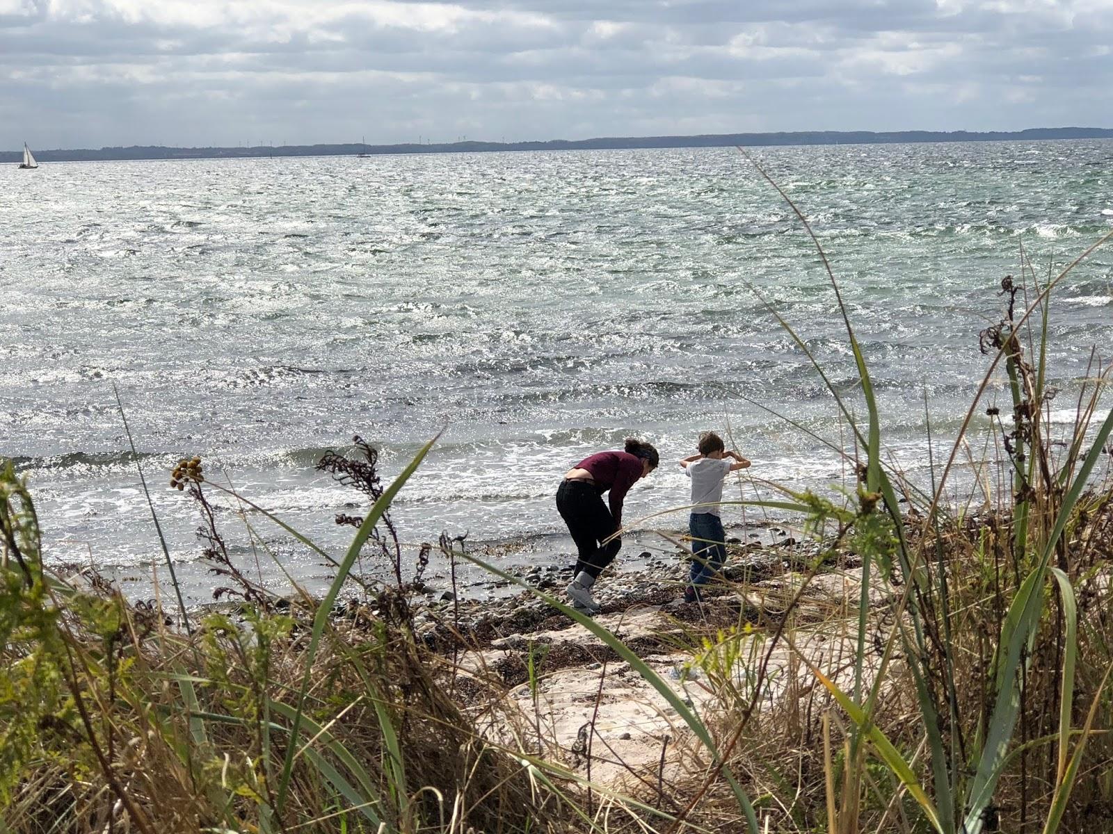 Die Kinder finden Schätze am Meeresufer. Kegnaes, Dänemark