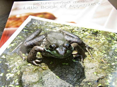 A Contest, A Cookbook and a Frog Named Ambrose