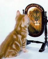 Bir dev aynasında kendini bir aslan gibi gören megaloman bir kedi yavrusu