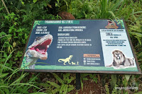 petualangan dinosaurus tmii