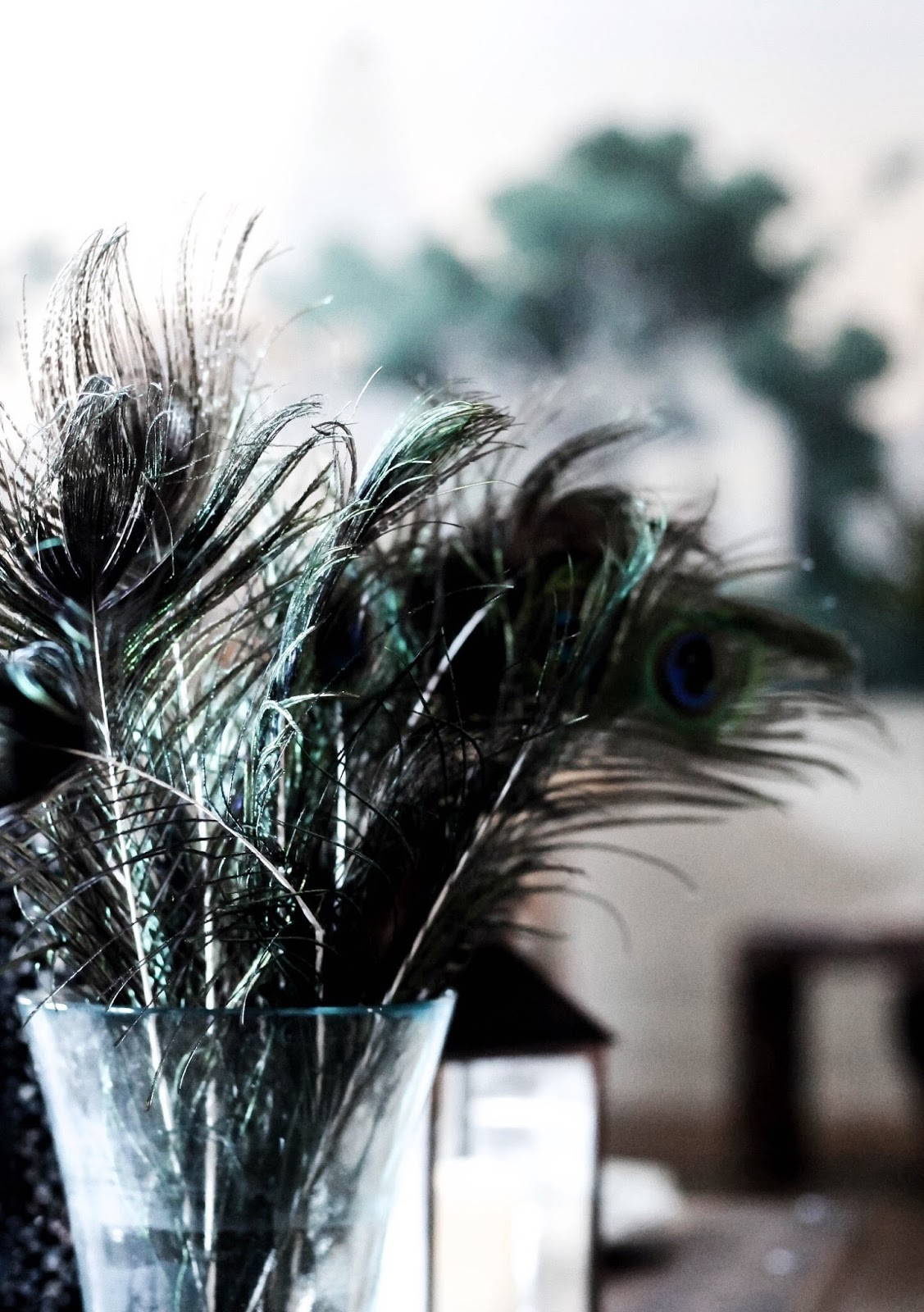 Peacock Feather Vase Interior Design