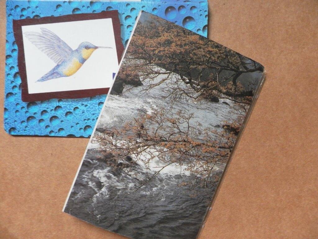 Como proteger fotos impressas