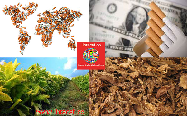 cigarette export, cigarette industry