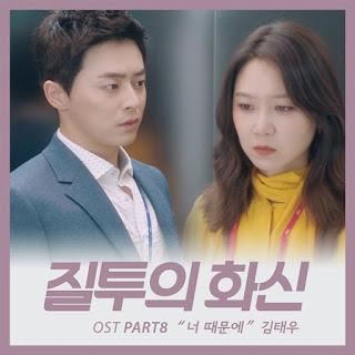 Kim Tae Woo (김태우) – Because Of You