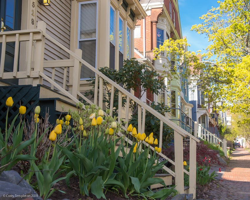 Portland, Maine USA Photo by Corey Templeton. spring has arrived in Portland's Parkside neighborhood.