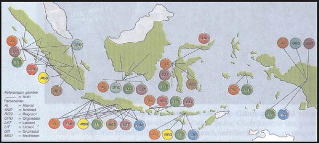 Macam-macam Jenis Tanah di Indonesia dan Persebarannya