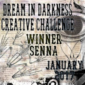 01/2017 Winner at Dream in Darkness Creative Challenge