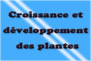 Cours croissance et développement des plantes SVI S6