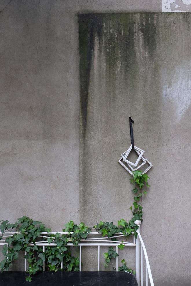 12von12, Gartenbett im Regen, Garten, Efeu rankt