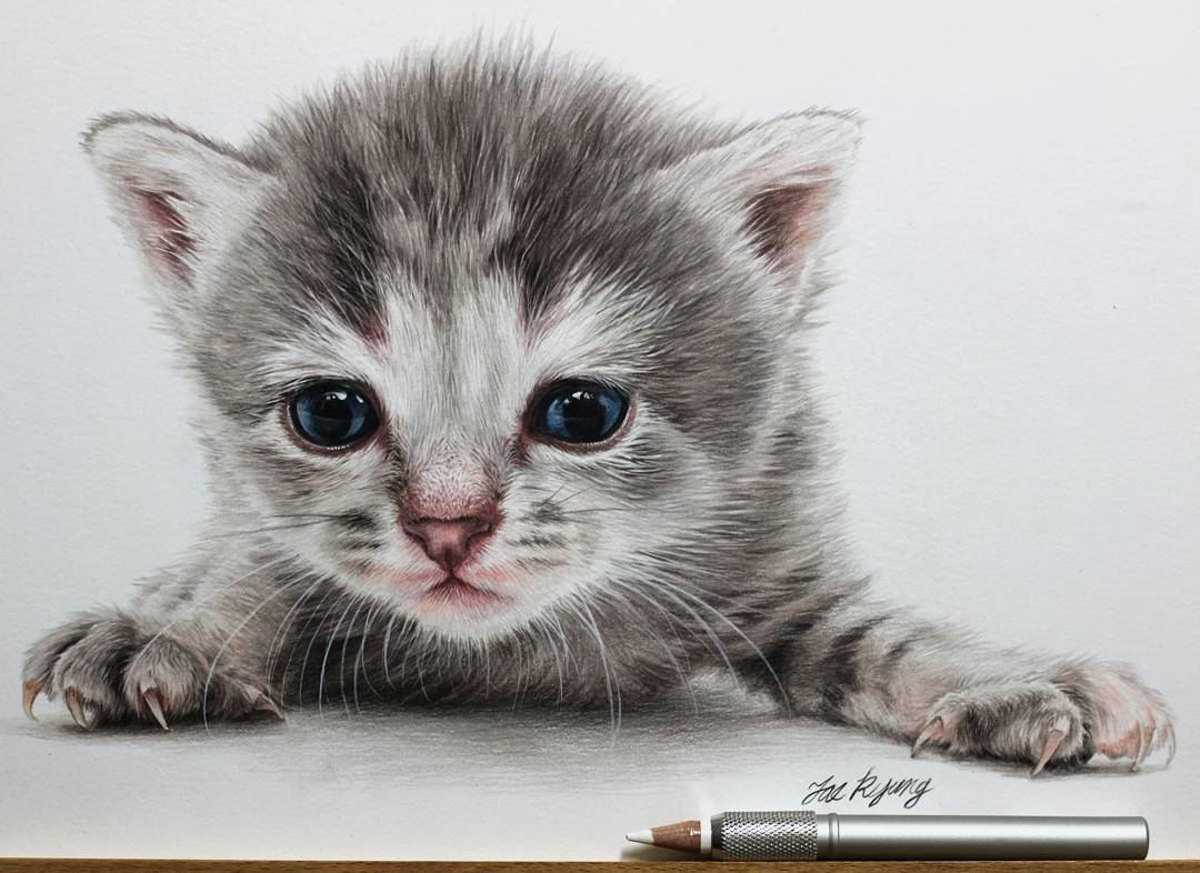 02-Kitten-Jae-Kyung-Cute-Kittens-and-Puppies-Drawings-www-designstack-co