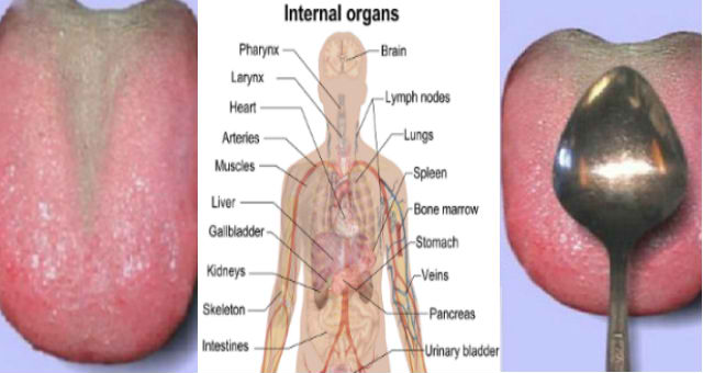 Check If Something Is Wrong With Your Inner Organs In Less Than 1 Minute Just By Doing This