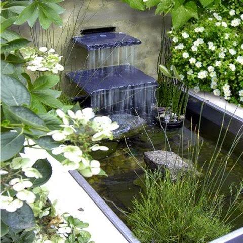 contoh desain gambar kolam ikan sederhana rumah minimalis