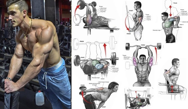 The Most Effective Mass-Building Triceps Workout