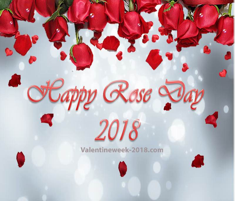 rose day image 2018