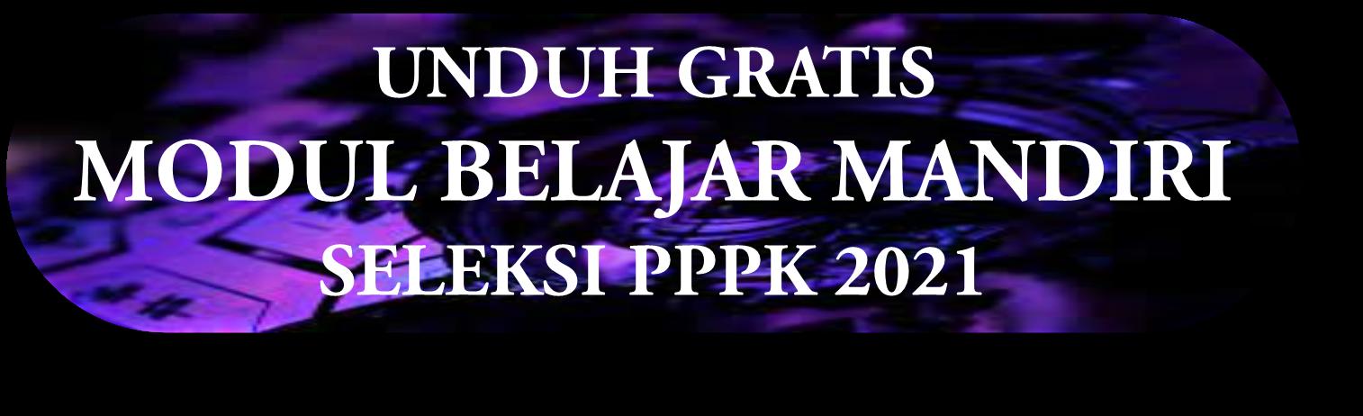 SELEKSI CPNS & PPPK 2021