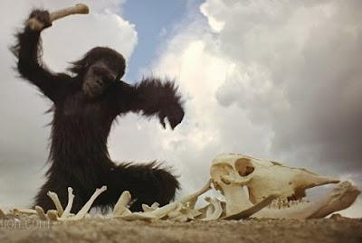 2001 monkey