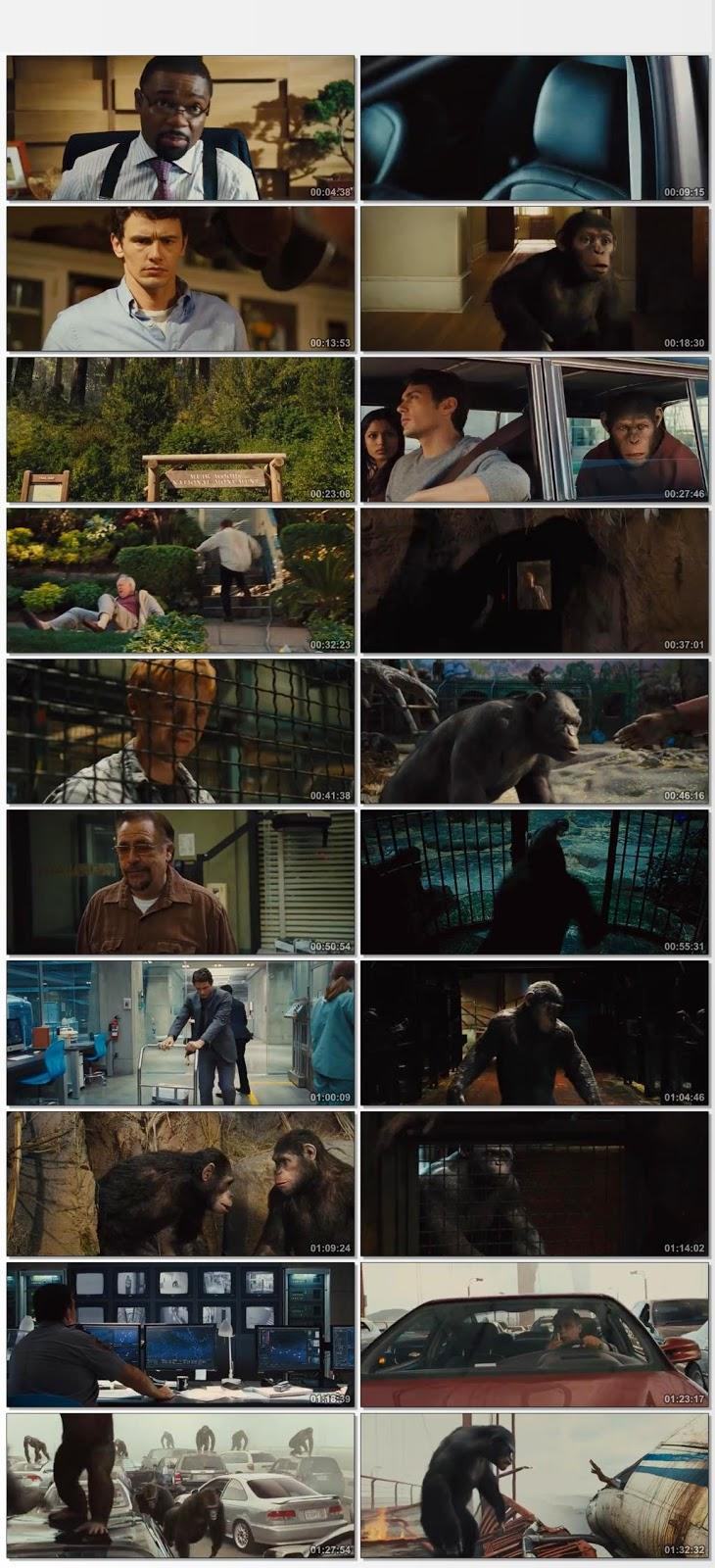 Screen Shot Of Rise of the Planet of the Apes 2011 In Hindi English Dual Audio Bluray
