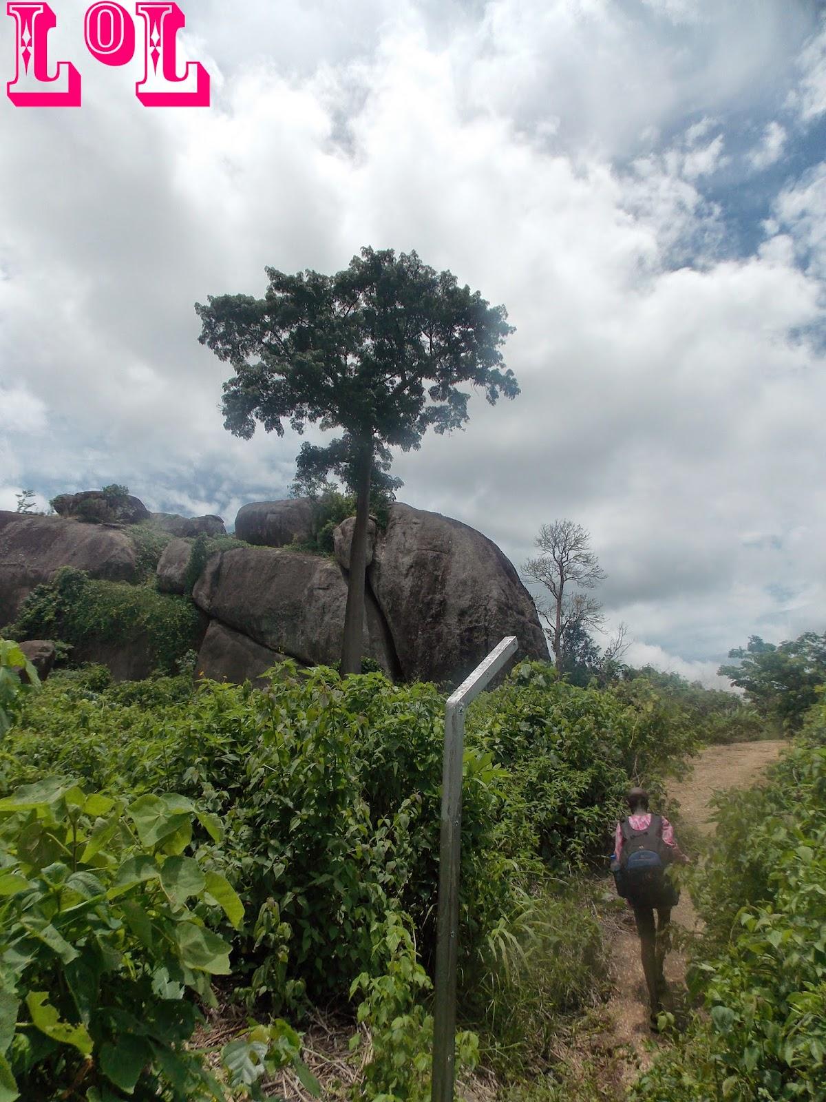 Idare Hills