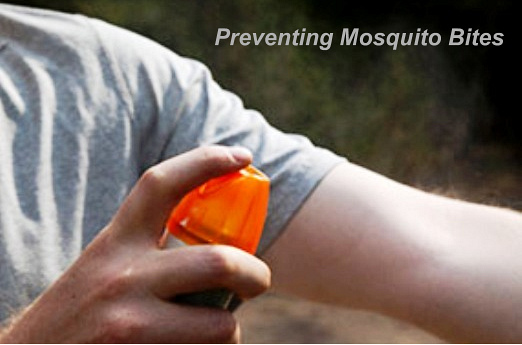Preventing Insect Bites And Stings