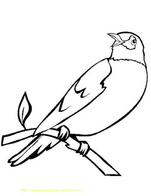 Gambar Mewarnai Burung - 4
