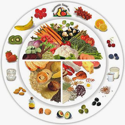 Quels sont les types d'aliments et de nutriments